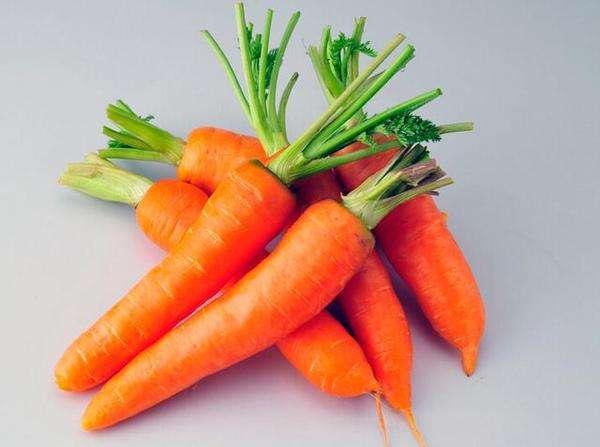 猫能吃胡萝卜吗?